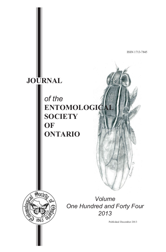 a cover of issue 144. A drawing of a fly with the issue number